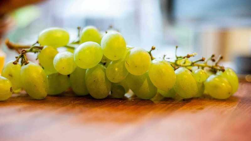 Weintrauben auf Tisch